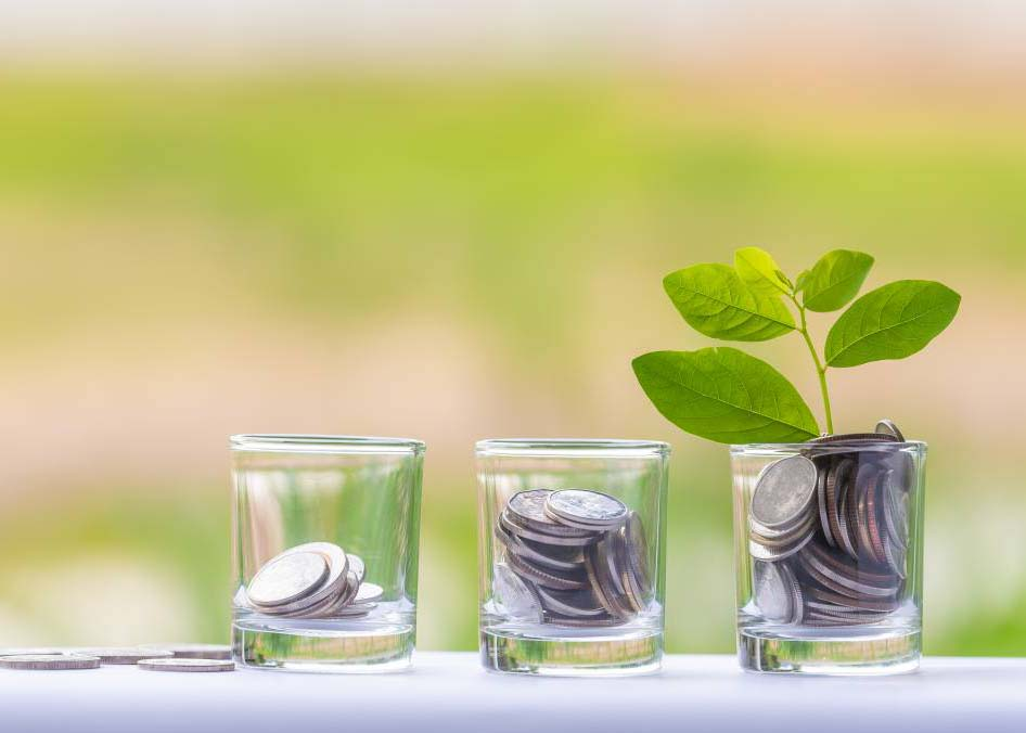 5 no-cost or low-cost ways to grow your business